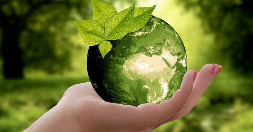 Nachhaltigkeit Anlage